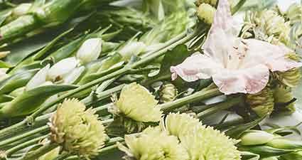 Spa- Blumen